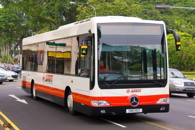 新加坡Bus1